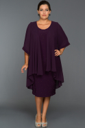 Plum Oversized Evening Dress ABK024