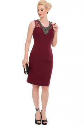 Plum Night Dress AN98280