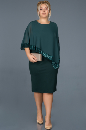 Short Green Plus Size Evening Dress ABK629