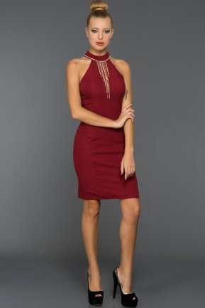 Short Burgundy Evening Dress DS287