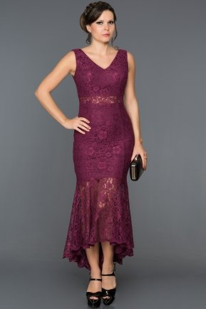 Long Plum Evening Dress AN2515