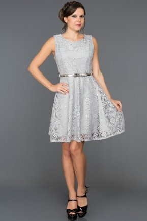 Short Grey Evening Dress BL2013