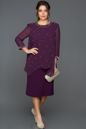 Purple Plus Size Evening Dress AR37055