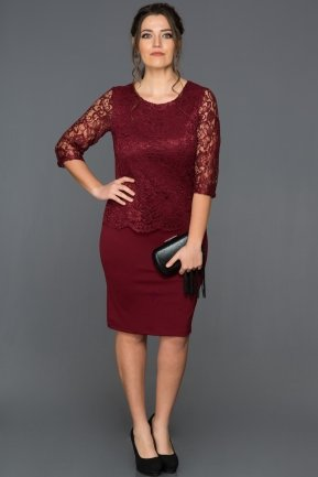 Short Burgundy Plus Size Evening Dress AB38209