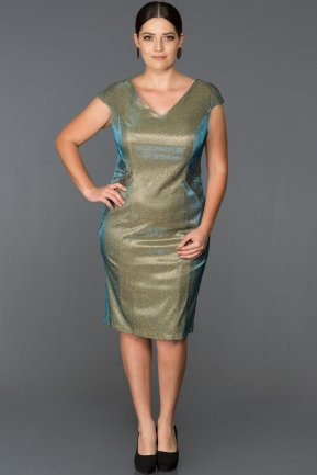 Short Green Plus Size Evening Dress AB7550