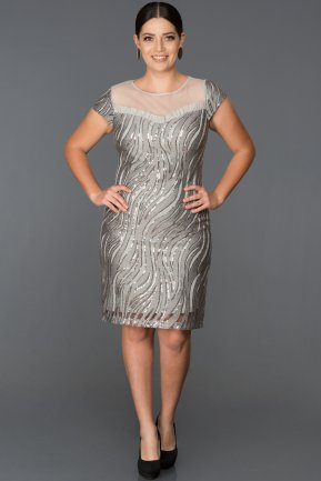 Short Grey Plus Size Evening Dress ABK011
