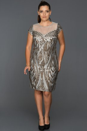 Short Grey Plus Size Evening Dress ABK054